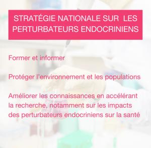 stratégie. perturbateur endocrinien France